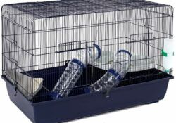 The best cage for a syrian hamster
