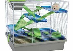 Hamster-cage-review