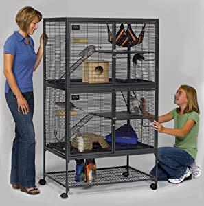 Luxury rat cage